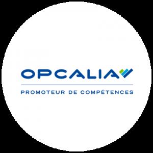 Le logiciel BDES pour gérer le dialogue social chez Opcalia