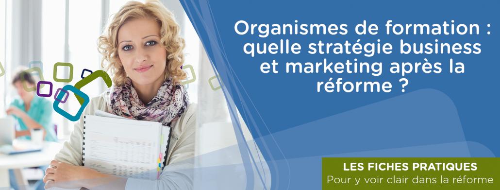 Organismes de formation : quelle stratégie business et marketing après la réforme ?